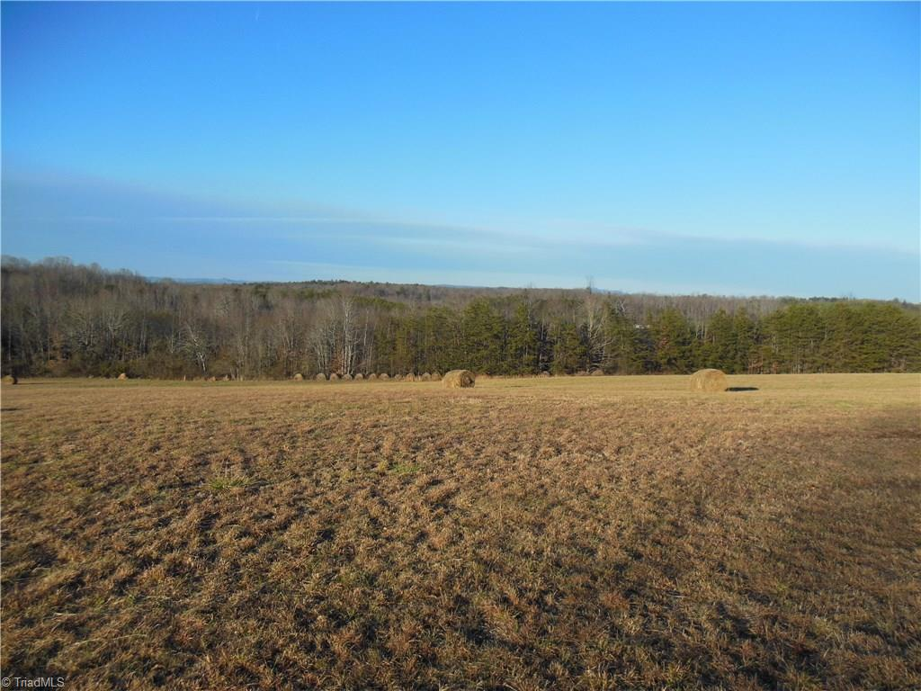 67 +/- acres with long range views of the Blue Ridge Mountains from the knoll at the top of the 8.5 acre field. Marshall Creek winds along the western and part of the southern border. The creek is wide, bold and scenic.  This land offers privacy and recreation. Part of a larger parcel. Buyer to survey.  Tax value and taxes based on full parcel. No singlewides.