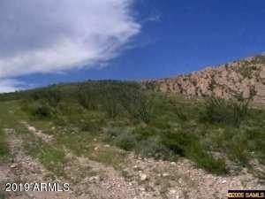 xxxx N Wilderness Trail # 119, Douglas, Arizona 85607, ,Land,For Sale,xxxx N Wilderness Trail # 119,5992941