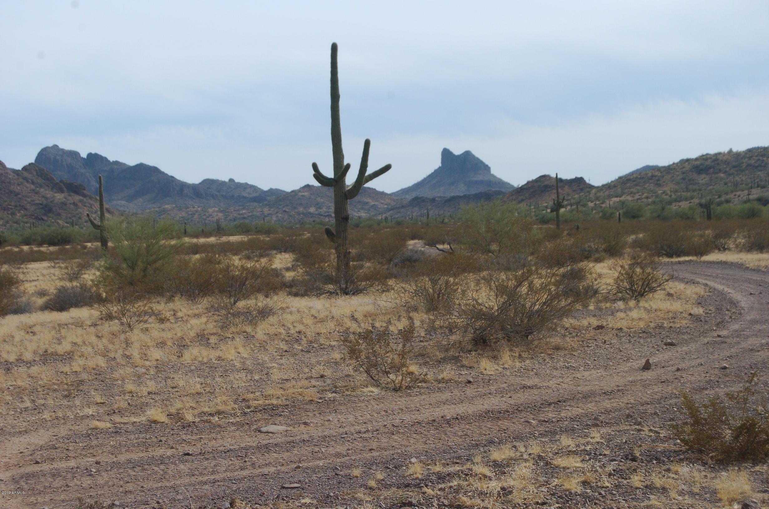 00 W Harmon Road, Eloy, Arizona 85131, ,Land,For Sale,00 W Harmon Road,6005456