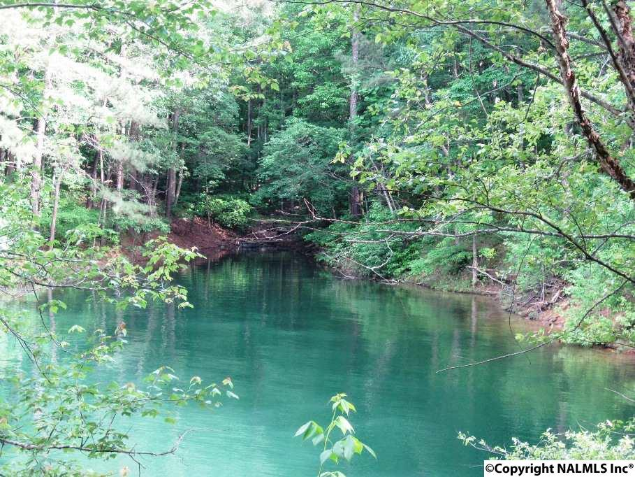 Photo of home for sale at 33 County Road 159, Crane Hill AL