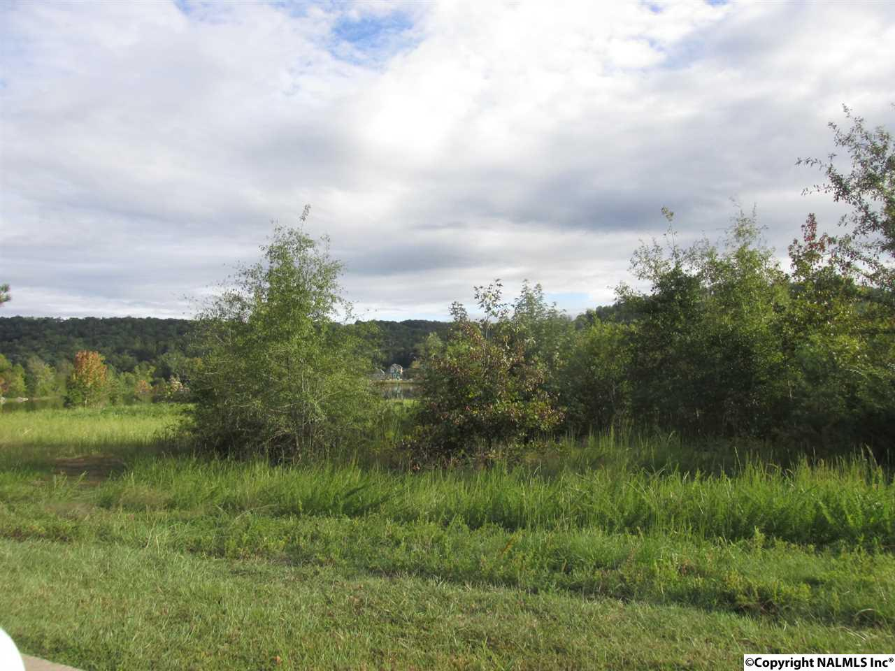 Photo of home for sale at Lot 17 Blue Lakes, Gadsden AL