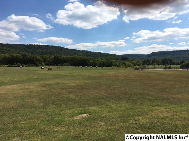 Photo of home for sale at Lot 19 Cedar Trace Drive, Hartselle AL