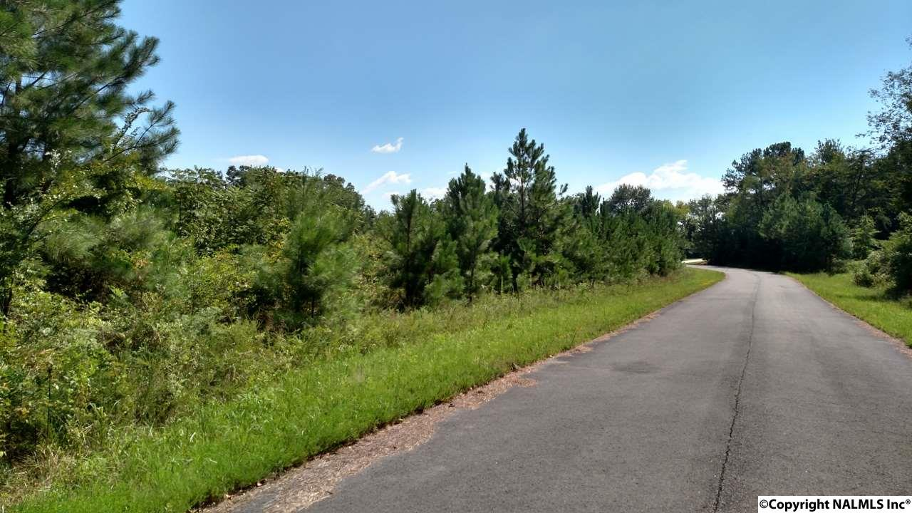 Photo of home for sale at Lot 107 Drew Drive, Hollywood AL
