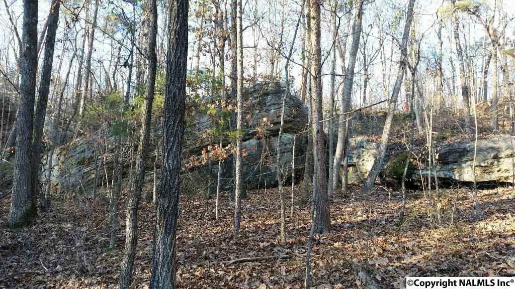 Photo of home for sale at 17AC Pleasant Valley Road, Union Grove AL