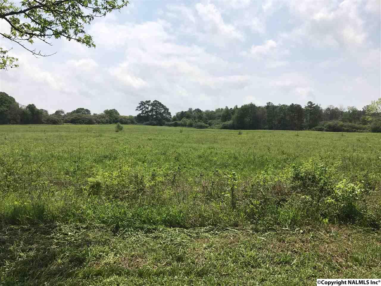 Photo of home for sale at 685 Lee Holcomb Road, Boaz AL