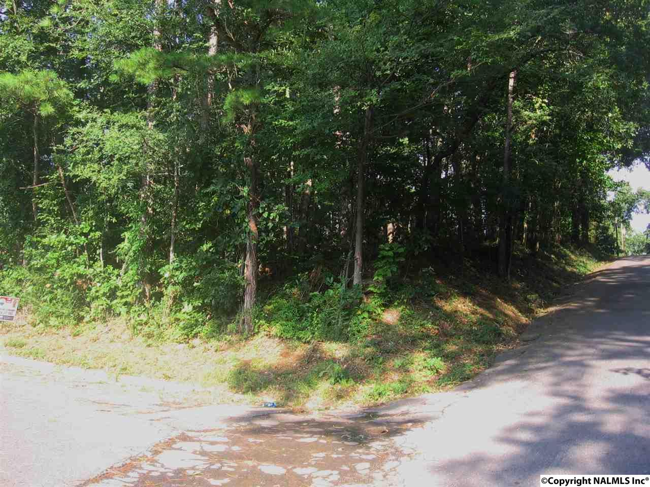 Photo of home for sale at 1895 Brown Street, Guntersville AL