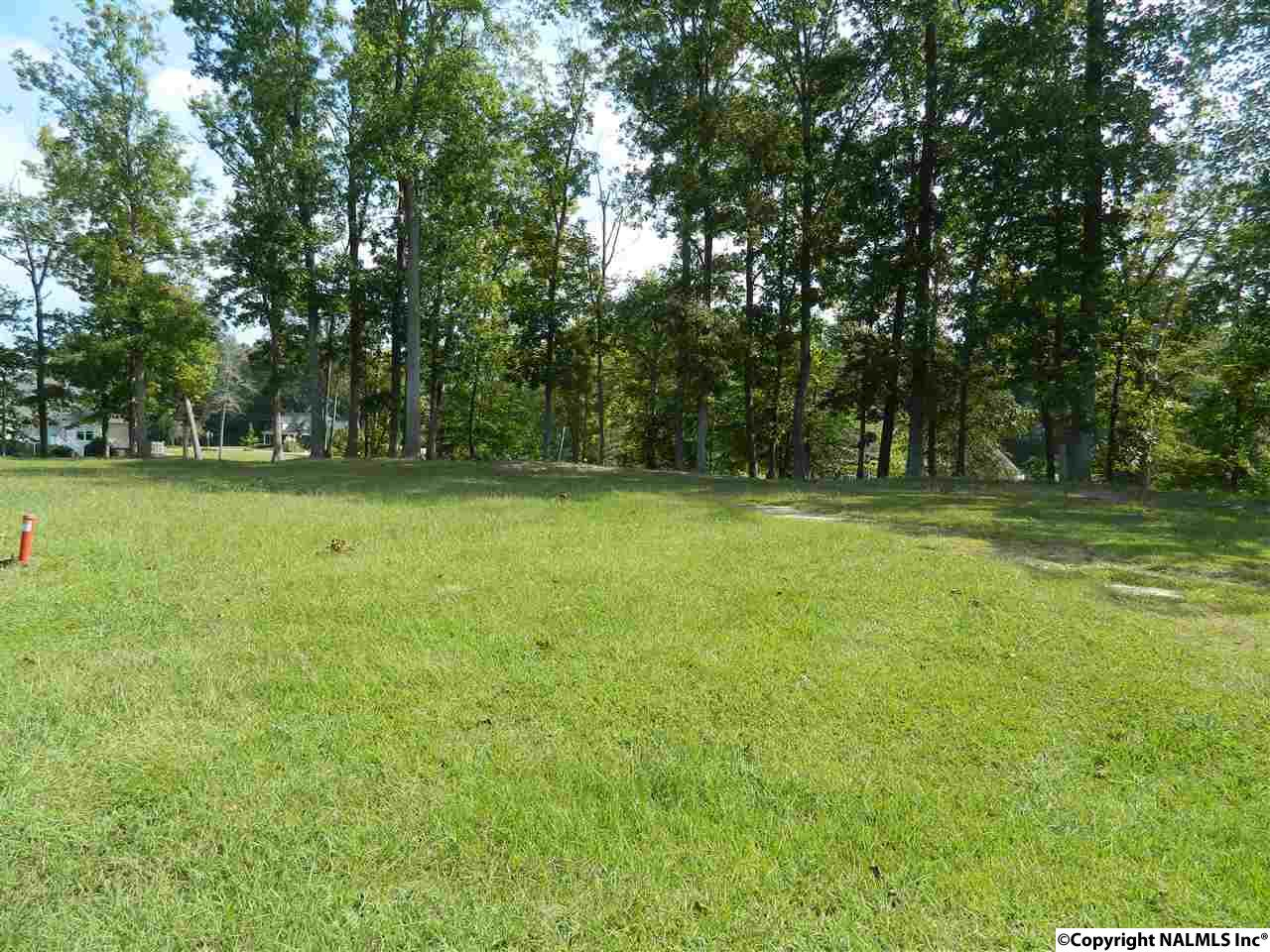 Photo of home for sale at Lot3 River Run Road, Southside AL
