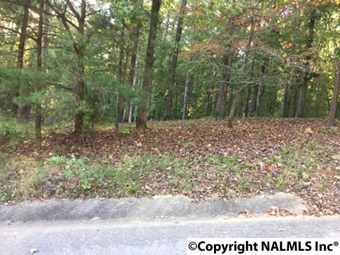 Photo of home for sale at 00 Spindletop Drive, Guntersville AL