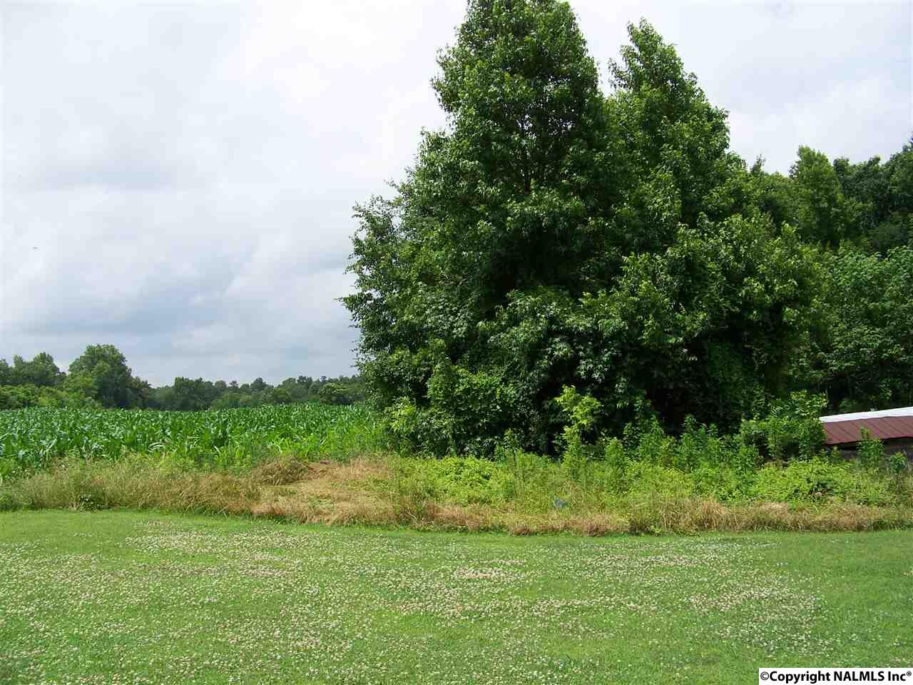 Photo of home for sale at 00 County Road 27, Sylvania AL