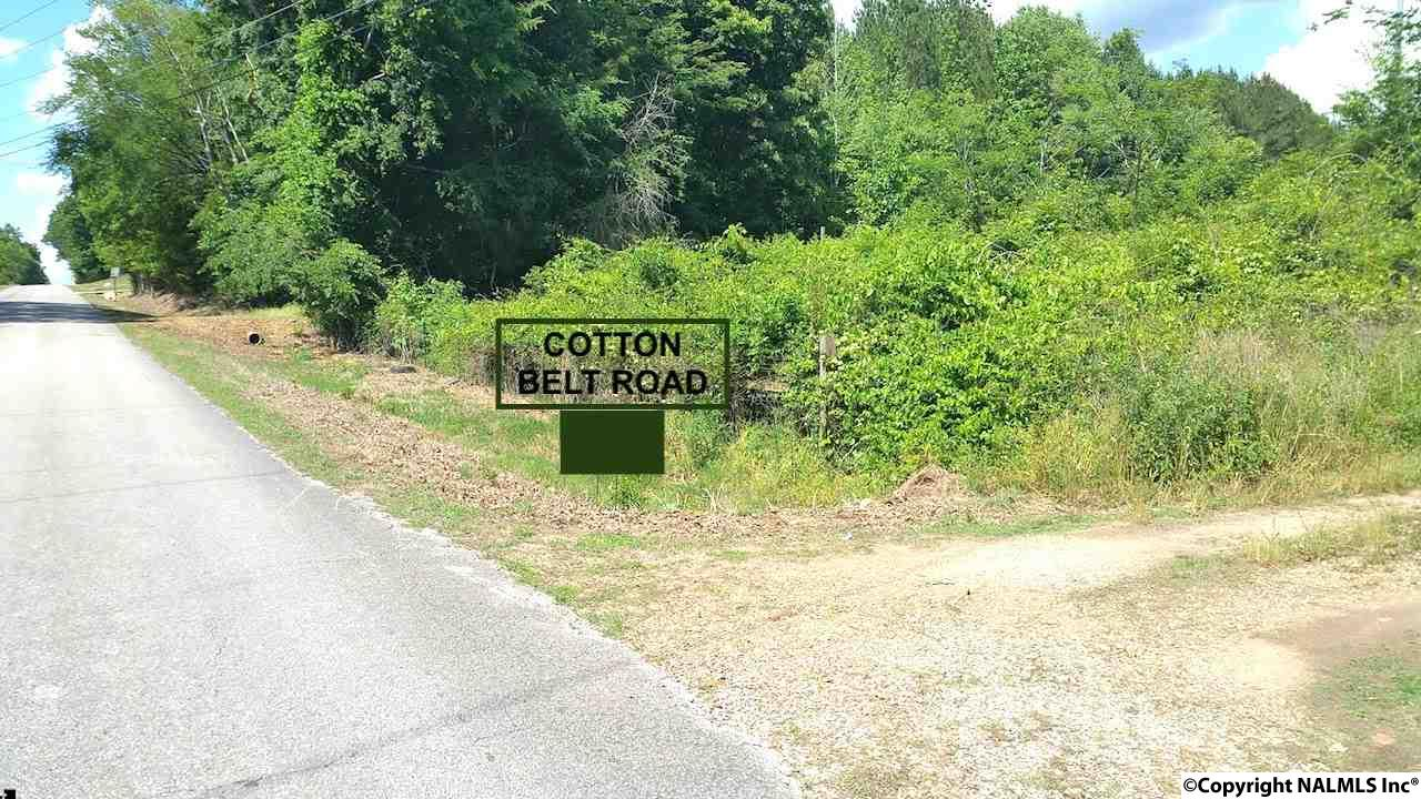 Photo of home for sale at Cotton Belt Road, Elkmont AL
