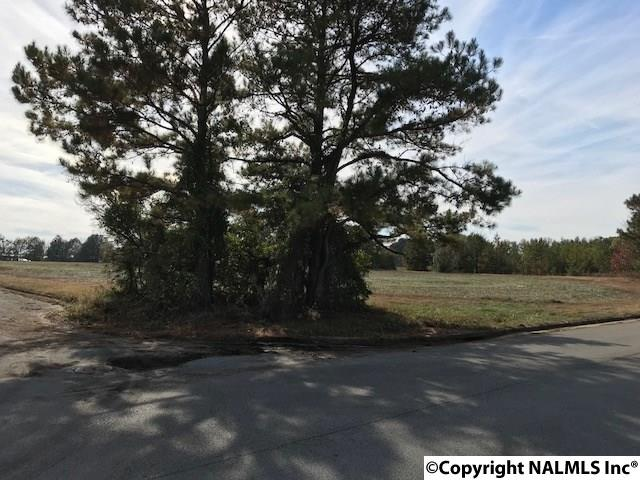Photo of home for sale at Lot 13 Commercial Drive, Athens AL