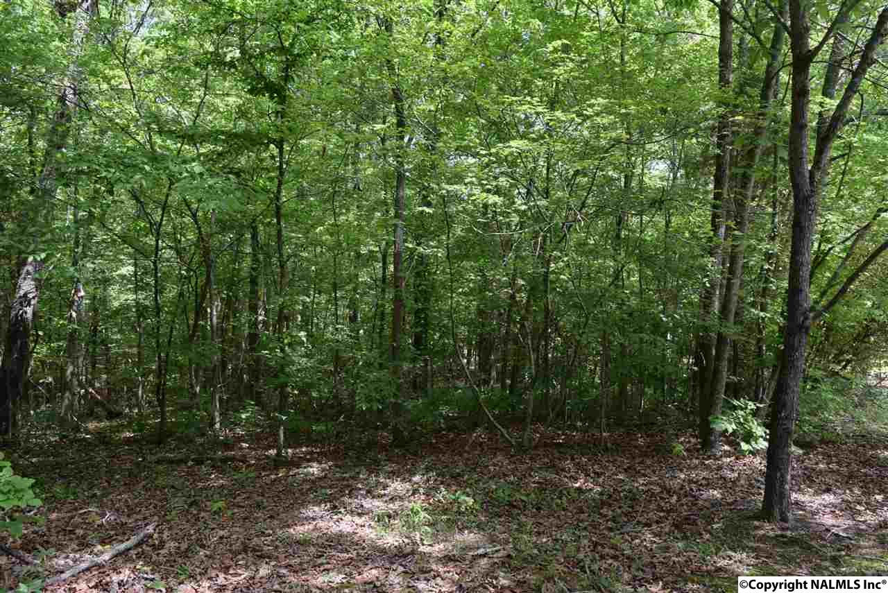 Photo of home for sale at 00 Highway 278, Hokes Bluff AL