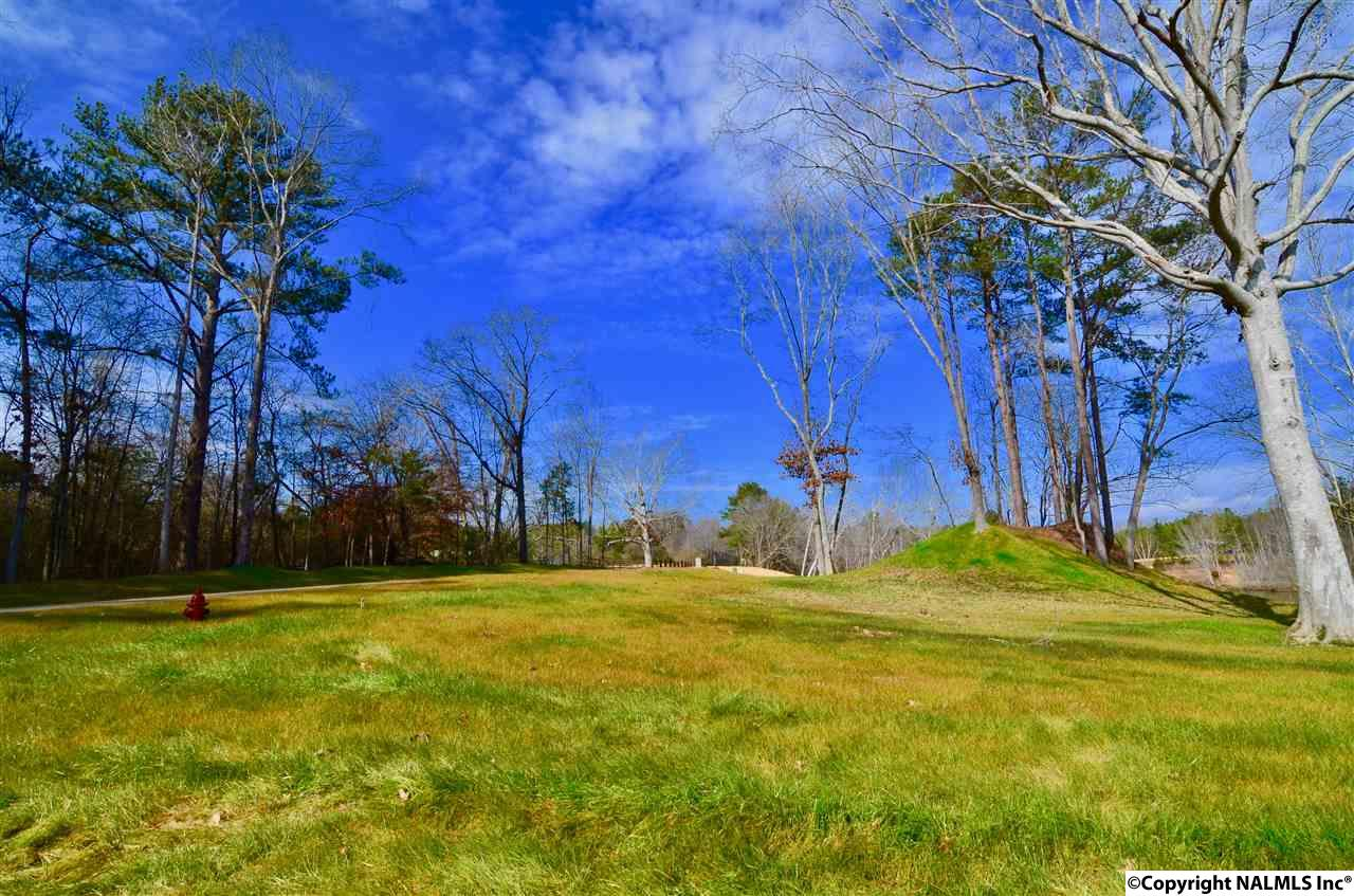 Photo of home for sale at Lot 27 Charlotte Lane, Gadsden AL