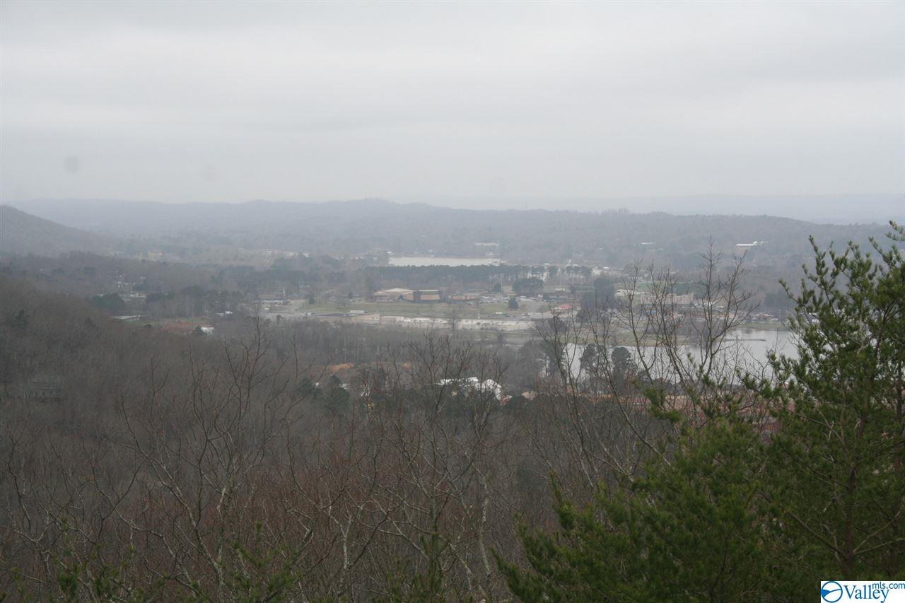 Photo of home for sale at 19 Ridgefield Circle, Guntersville AL