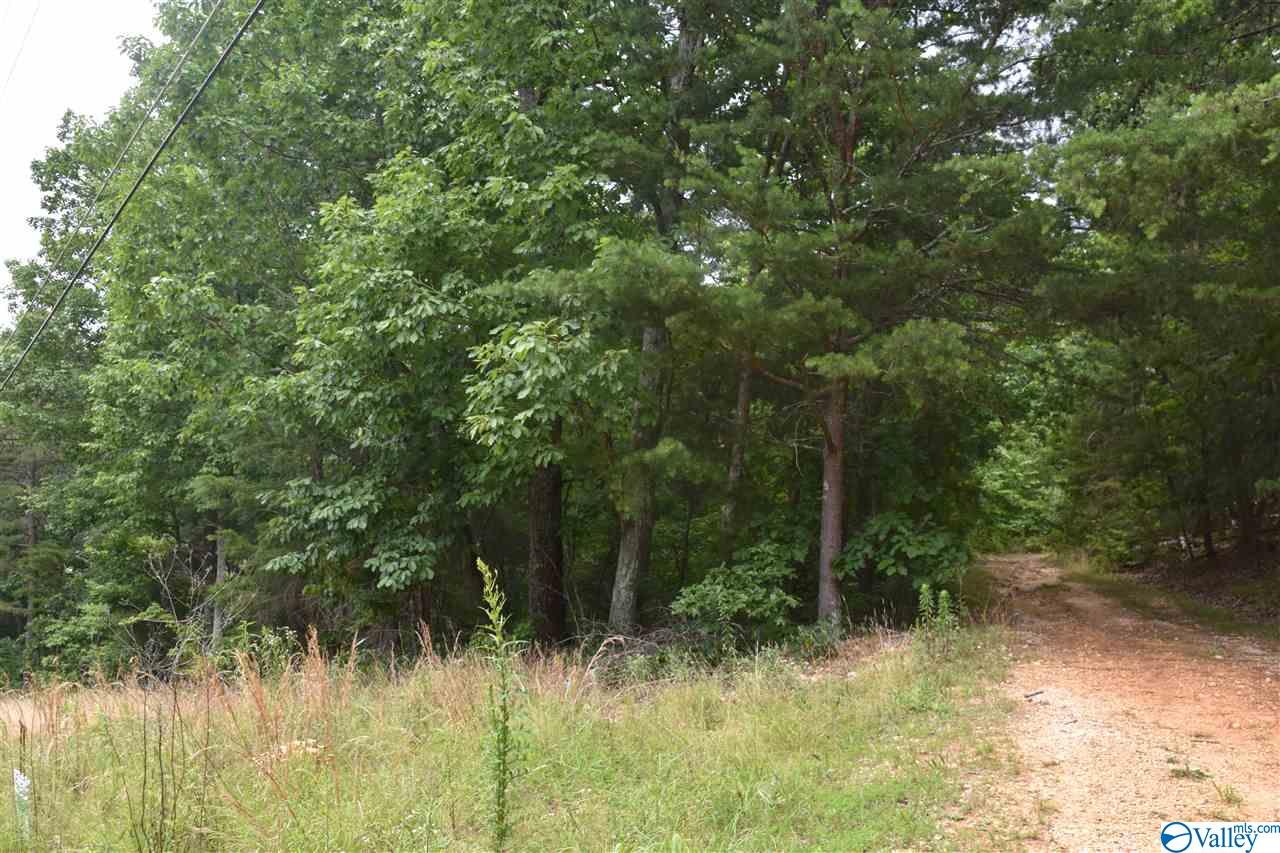 Photo of home for sale at L5 Lynn Drive, Fort Payne AL