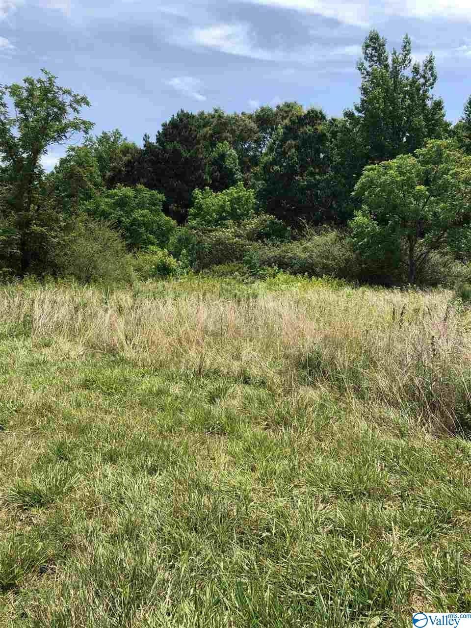 Photo of home for sale at Union Grove Road, Guntersville AL