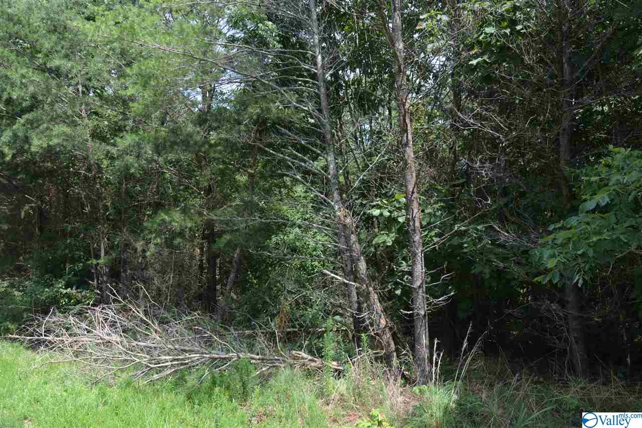 Photo of home for sale at LOT #30 County Road 224, Dutton AL