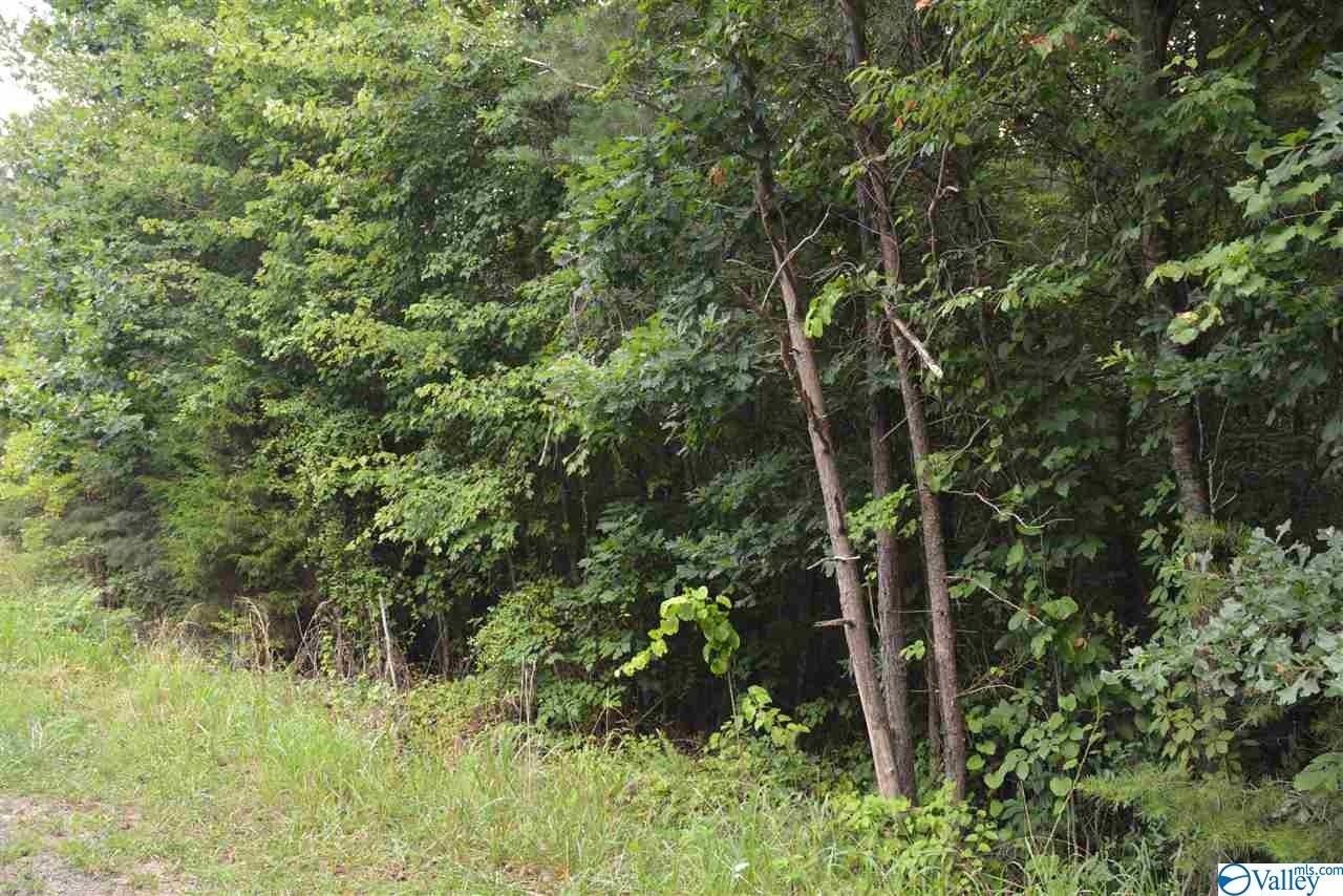 Photo of home for sale at LOT #26 County Road 224, Dutton AL
