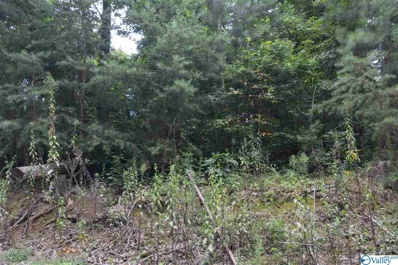Photo of home for sale at LOT #31 County Road 224, Dutton AL
