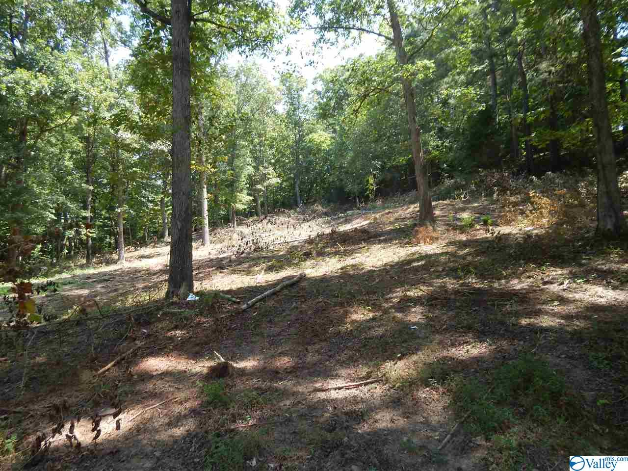 Photo of home for sale at 00 Little Ridge Road, Fort Payne AL