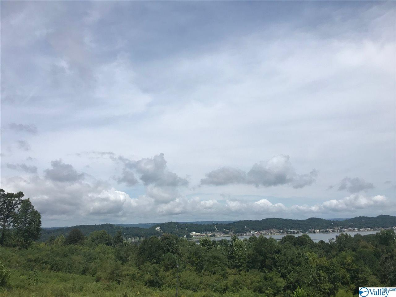 Photo of home for sale at 001 Woodvue Road, Guntersville AL