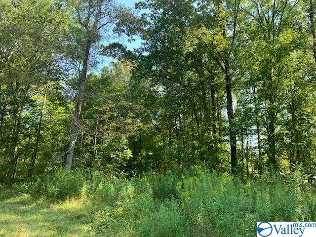 Photo of home for sale at 0 North Oak Road, Gadsden AL