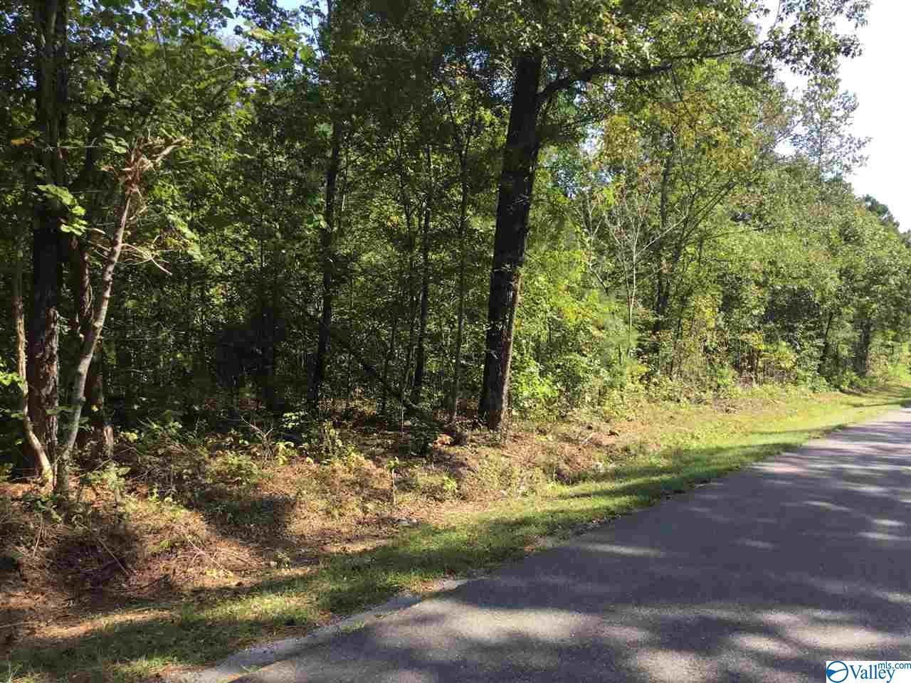 Photo of home for sale at 00 3rd Street, Hokes Bluff AL