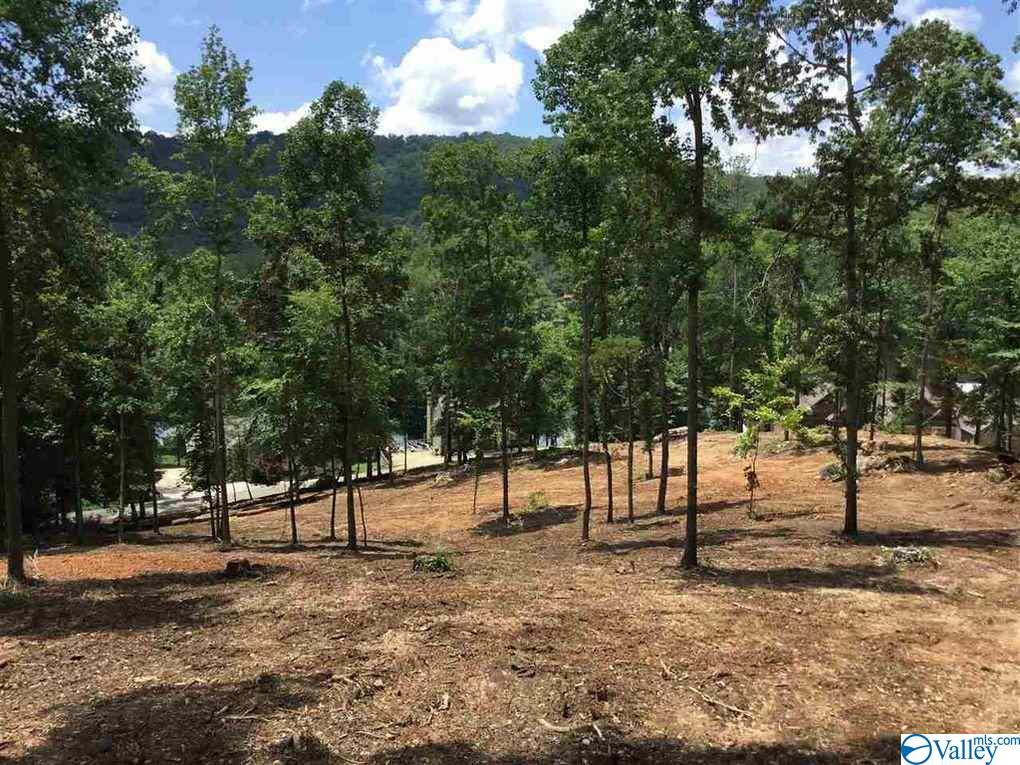 Photo of home for sale at Lot 5 White Elephant Road, Grant AL