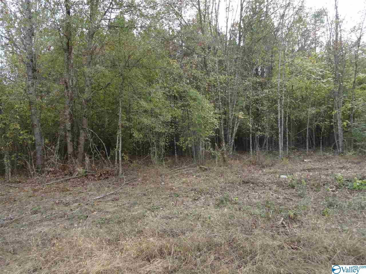 Photo of home for sale at 000 Gant Road, Scottsboro AL