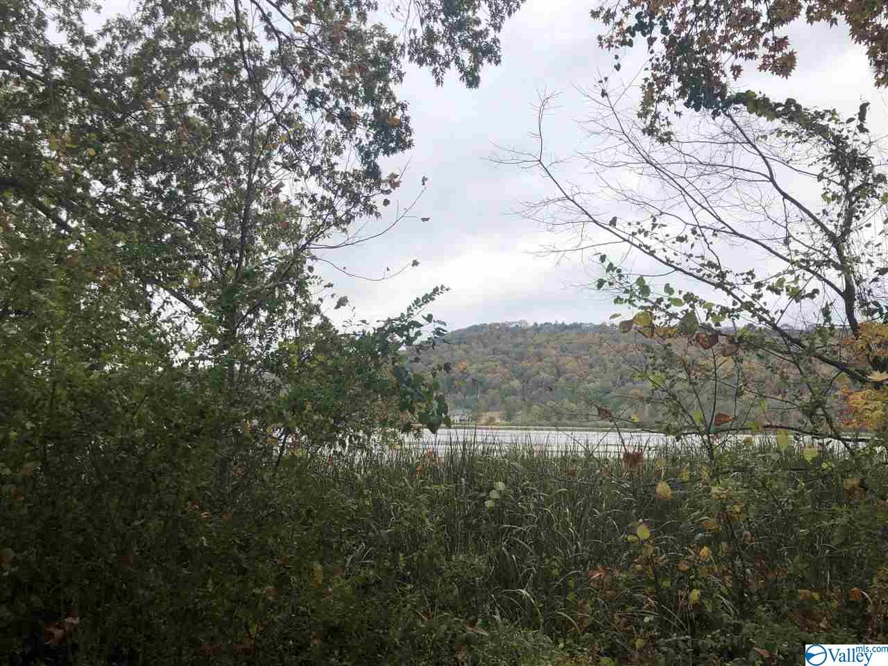 Photo of home for sale at Lot 5 Alabama Highway 79, Guntersville AL