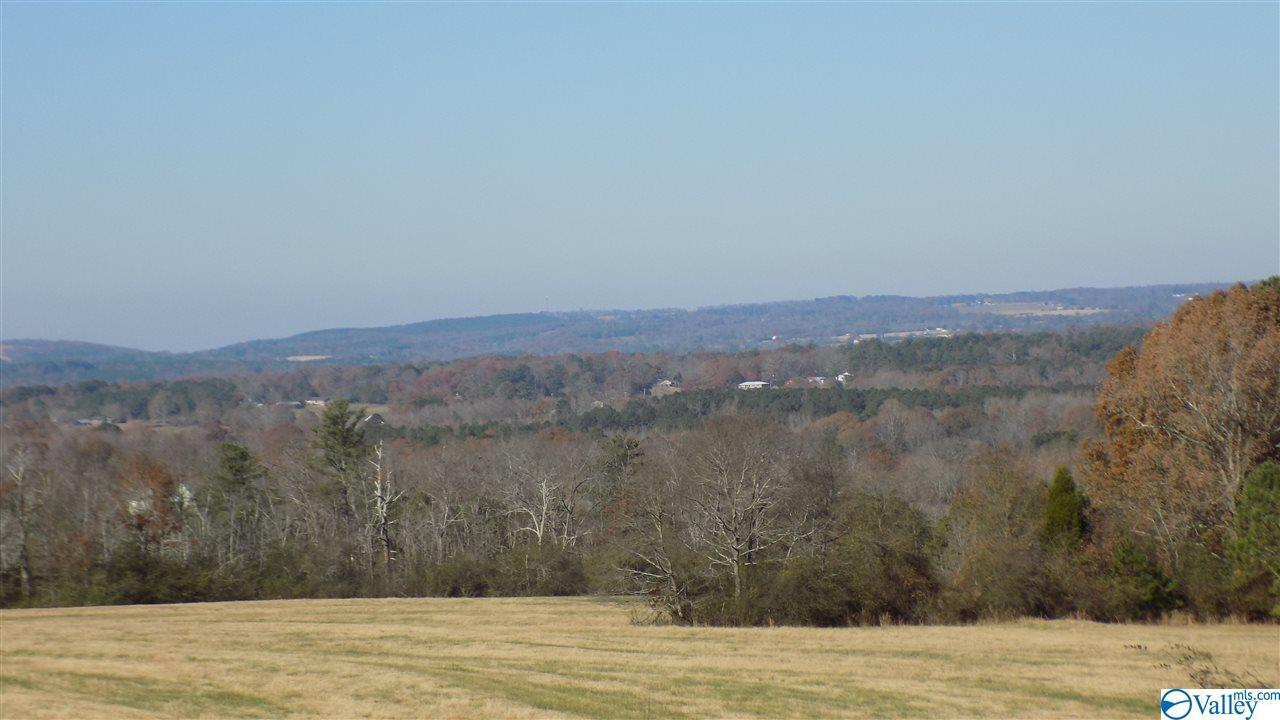 Photo of home for sale at Lot 8 County Road 674, Leesburg AL