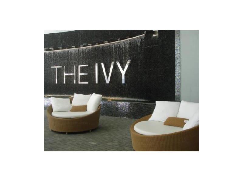 Ivy #1609 - 01 - photo