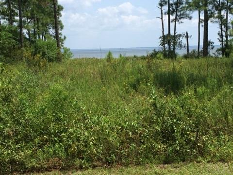 1056 Oyster Bay Dr Lot 17 E