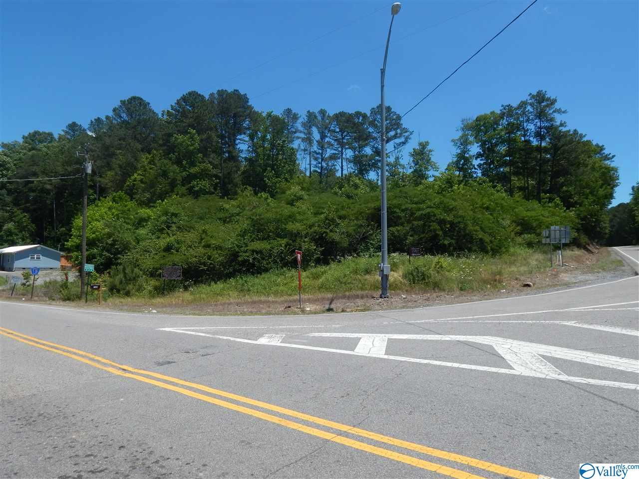 Photo of home for sale at 273 Alabama Highway 35, Gaylesville AL